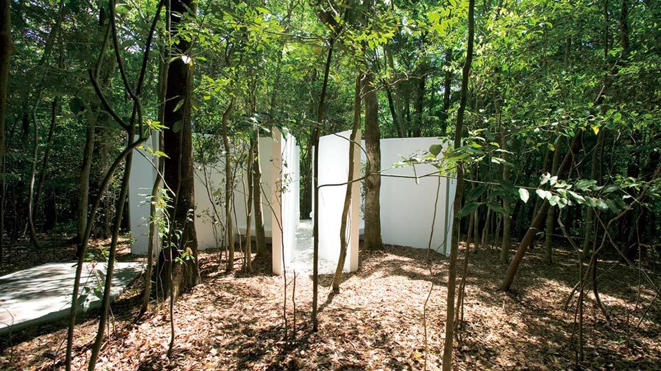 森の観測所の画像