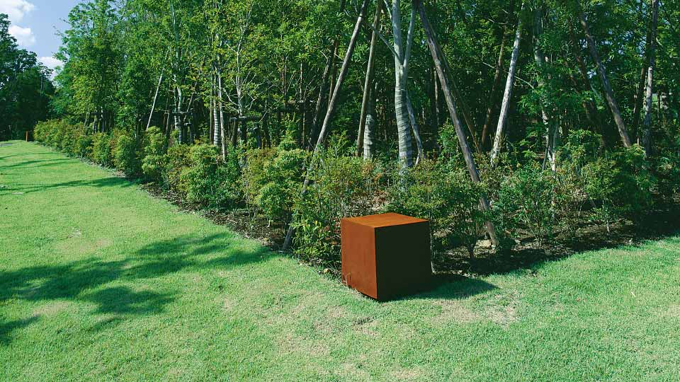 image of Graceful Woods Surrounded by Four Iron Cubes
